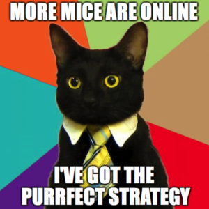 Business Cat knows